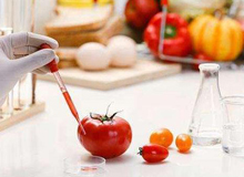 特殊医学用途配方食品代理注册